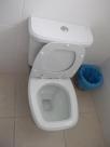 toiletflush.jpg